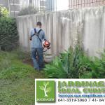 corte de grama e limpeza