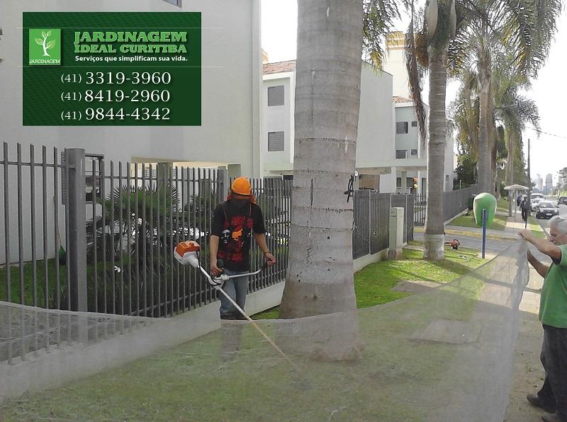 mini jardim curitiba : mini jardim curitiba:jardinagem em condominio