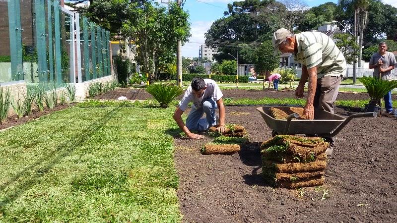 Plantação de Gramados