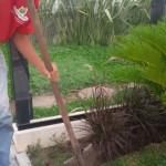 manutenção de jardim condominial
