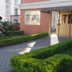 manutencao de jardim