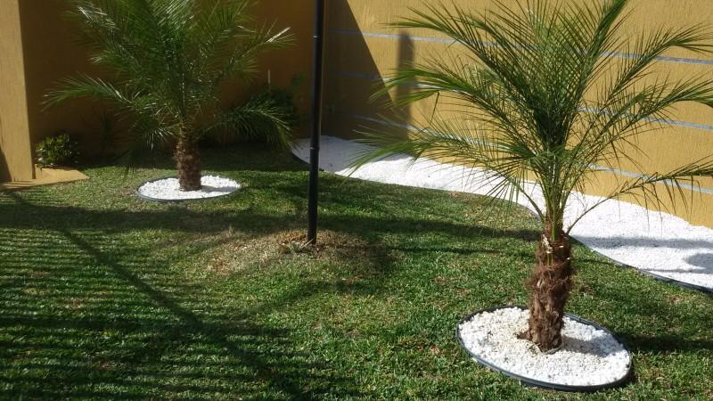 mini jardim curitiba:manutencao de jardim em condominio